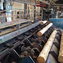 CC Log Centreing Conveyor -2-web